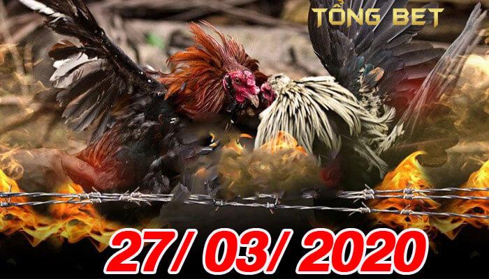 Video đá gà Mỹ trực tiếp thứ 6 ngày 27/03/2020 Video đá gà Mỹ trực tiếp thứ 6 ngày 27/03/2020