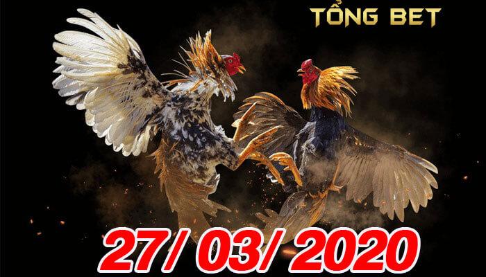 Trực tiếp đá gà Thomo - Campuchia ngày 27/03/2020