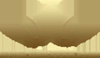 logo win3888